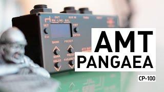 AMT PANGAEA CP-100 (IR Cabinet Simulator) thumbnail