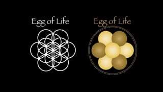 4   The Flower of Life - by David Hopkins