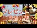【No.101】プレゼント当選発表♪ エソラch  オカメインコのオズ&セキセイインコのピーちゃん☆