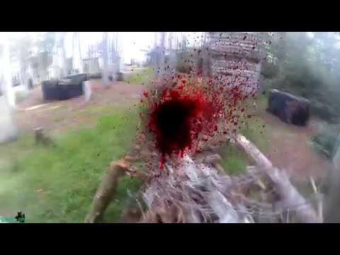 flower 1080p 60 fps sniper gameplay