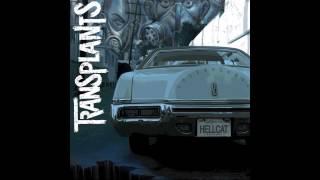 DJ, DJ - Transplants