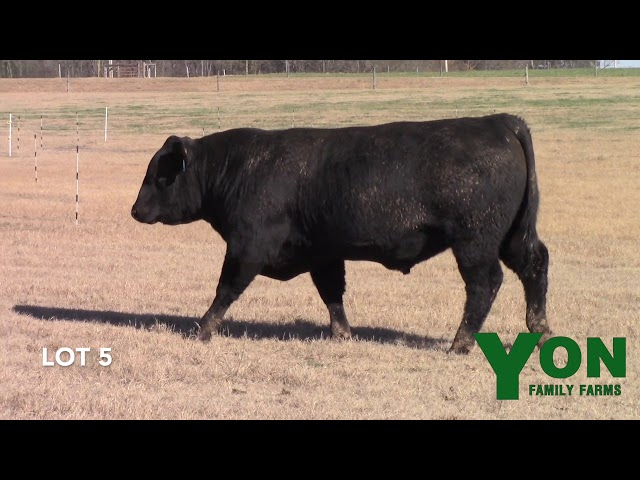 Yon Family Farms Lot 5