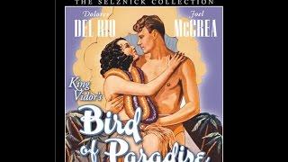 Райская птичка - фильм о самом красивом чувстве - любви
