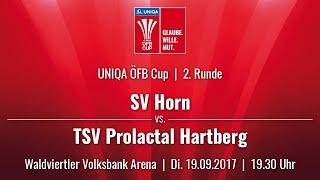SV Horn vs TSV Hartberg full match