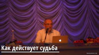 Торсунов О.Г.  Как действует судьба