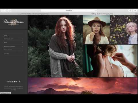 Theme gallery wordpress