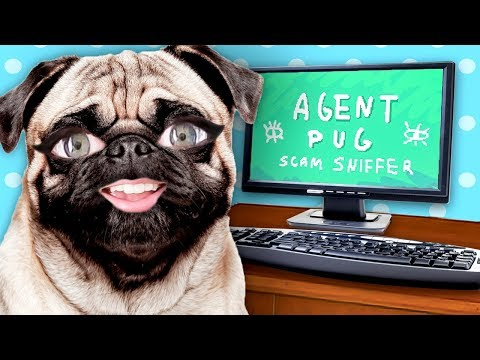 7 Internet Scams To Watch Out For in 2020 from YouTube · Duration:  13 minutes 46 seconds