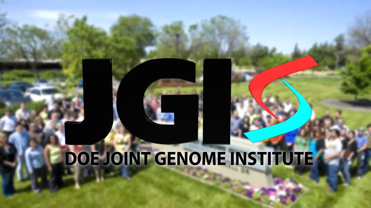 Energy Genomics at the DOE Joint Genome Institute - YouTube