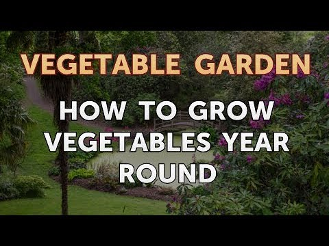 How To Grow Vegetables Year Round