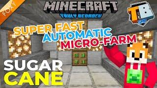 SUGAR CANE FARM | Truly Bedrock Season 2 [4] | Minecraft Bedrock Edition 1.14 SMP