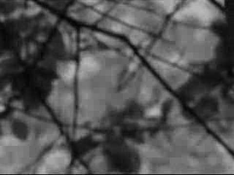 L'Antagonista - [MystFest 2008]
