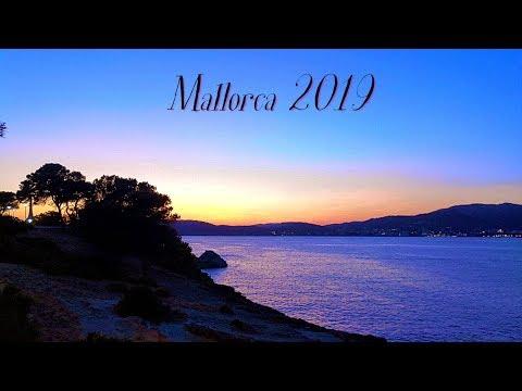 ✈️Mallorca 2019 - Santa Ponsa, Palma, Aquarium🌴