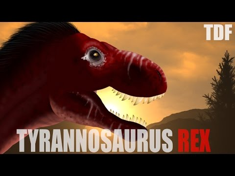 Tyrannosaurus Rex The King (TDF FACTS)