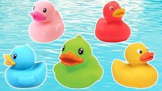 Five Little Ducks - Sing Along with Reihan