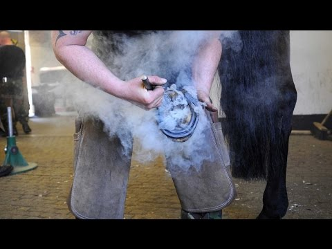 Smoking Hot: Household Cavalry Host World Farrier Championships | Forces TV