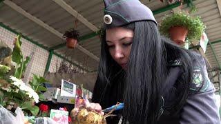 В России начинается дачный сезон.