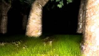 [FUN] Slender #1