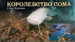Королевство сома Сомы Европы Рыбалка Saint Cassien