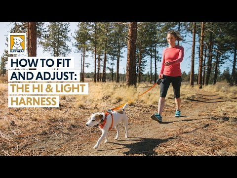 How To Fit and Adjust the Ruffwear Hi & Light Dog Harness