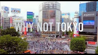 WHY NOT TOKYO ~東京開業ワンストップセンター~