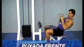 Técnica de execução de exercícios Costas