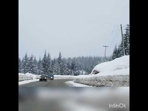 Drive down Mt Washington, Vancouver Island February 2018