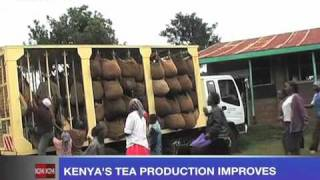 Kenyan tea production improves