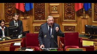 Affaire Benalla : bras de fer politique entre le Sénat et l'Élysée thumbnail