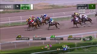 Vidéo de la course PMU PREMIO SPRING FOAL
