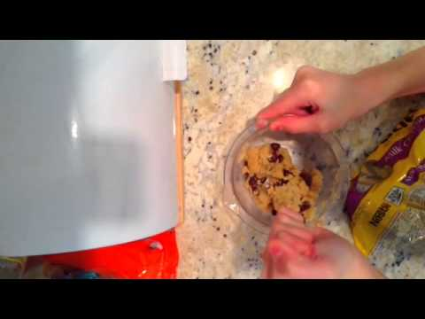 How To Make Easy Bake Oven Chocolate Chip Cookies From Scratch