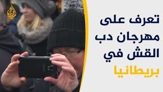 بالفيديو.. تعرف على مهرجان دب القش ببريطانيا