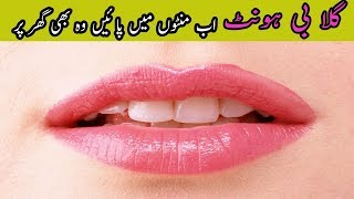 Pink Lips in 1 Day Naturally Home Beauty Tips in Urdu