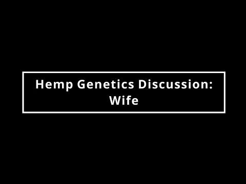 Hemp Genetics Discussion-Wife