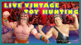 Live Vintage Toy Hunting - Yard Sale Collection Find - LJN Hasbro WWF WWE Wrestling, Yu-Gi-Oh Haul