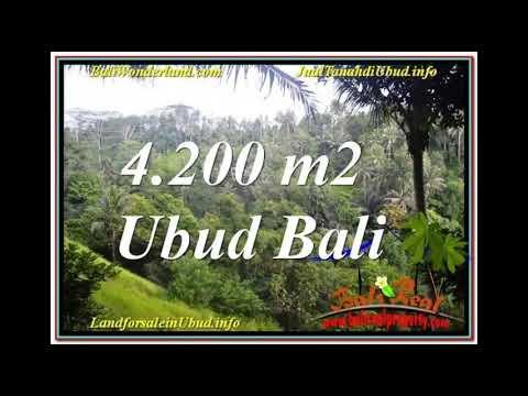 Sentral / Ubud Center BALI 4,200 m2 LAND FOR SALE TJUB639