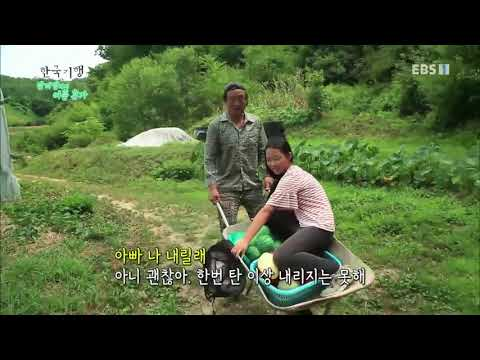한국기행 - Korea travel_앞마당에서 여름휴가 2부 산골소녀 머루의 여름_#001