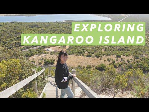 Exploring Kangaroo Island, Australia | jtwonggg