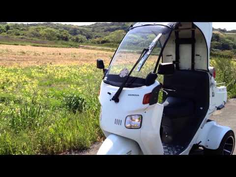Honda Canopy 3 Wheel Scooter Doovi
