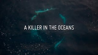 A Killer In The Oceans