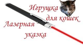 Лазерная указка или игрушка для кошек / Laser pointer or a toy for cats