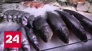 Жарить, варить и солить: Роспотребнадзор не советует употреблять сырую рыбу - Россия 24