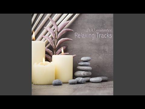 Shakuhachi Flute Music for Transcendental Meditation