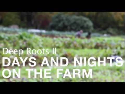 Deep Roots II - (Full Video)