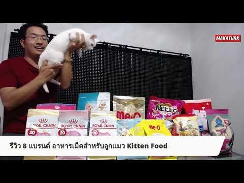 รีวิว 8 แบรนด์ อาหารสำหรับลูกแมวยอดนิยม Kitten Food