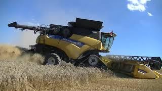 Sklizeň Pšenice s Kombajny New Holland