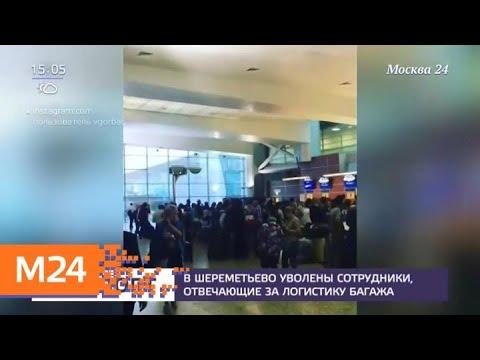 В Шереметьеве уволили пятерых сотрудников обслуживающей компании - Москва 24