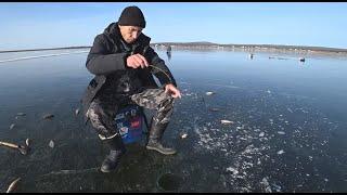 ПЕРВЫЙ ЛЕД ОПАСНЫЙ НО ЩЕДРЫЙ первый лед 2020 2021 рыбалка