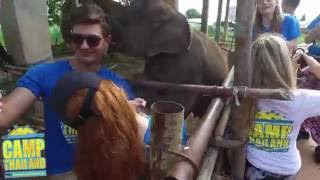 Camp Thailand - This is why YOU should do Camp Thailand!