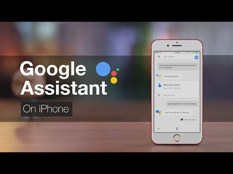 Google Assistant On IPhone: Does It Make Sense?