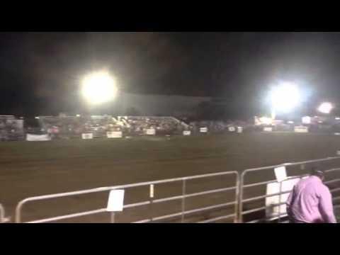 This Cash Has Credit placing at Panama City PCA rodeo